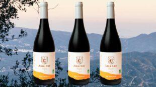 Ama Lur Hegoa, rött vin från Baskien