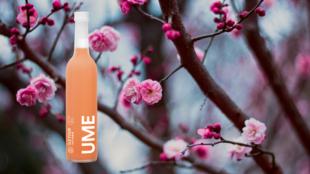 Ile Four UME Plommon Sake Japan